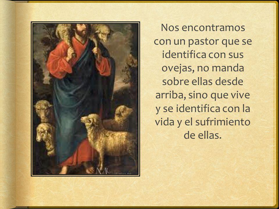 Nos encontramos con un pastor que se identifica con sus ovejas, no manda sobre ellas desde arriba, sino que vive y se identifica con la vida y el sufrimiento de ellas.