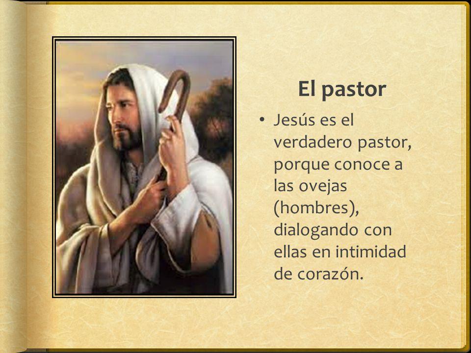 El pastor Jesús es el verdadero pastor, porque conoce a las ovejas (hombres), dialogando con ellas en intimidad de corazón.