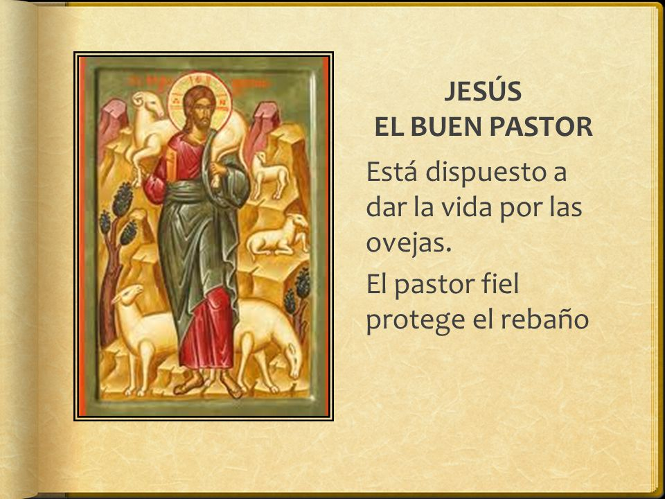 JESÚS EL BUEN PASTOR Está dispuesto a dar la vida por las ovejas.