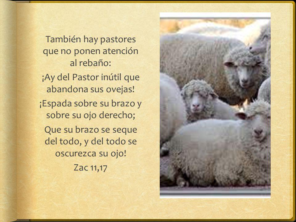 También hay pastores que no ponen atención al rebaño: