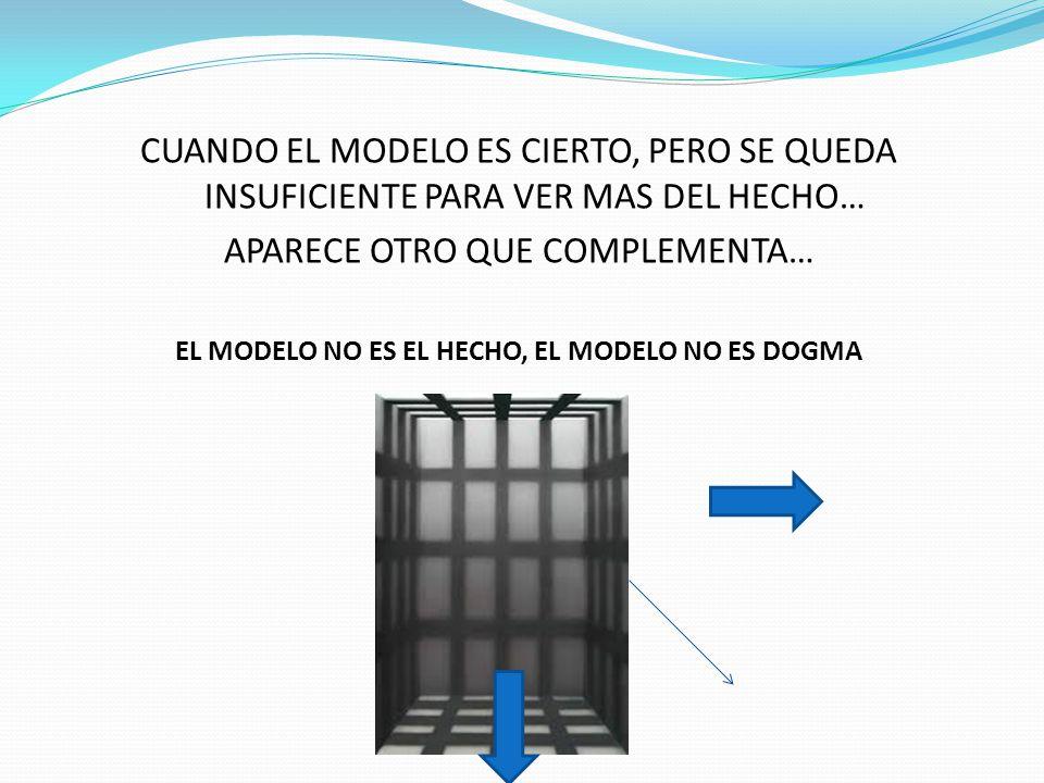 EL MODELO NO ES EL HECHO, EL MODELO NO ES DOGMA