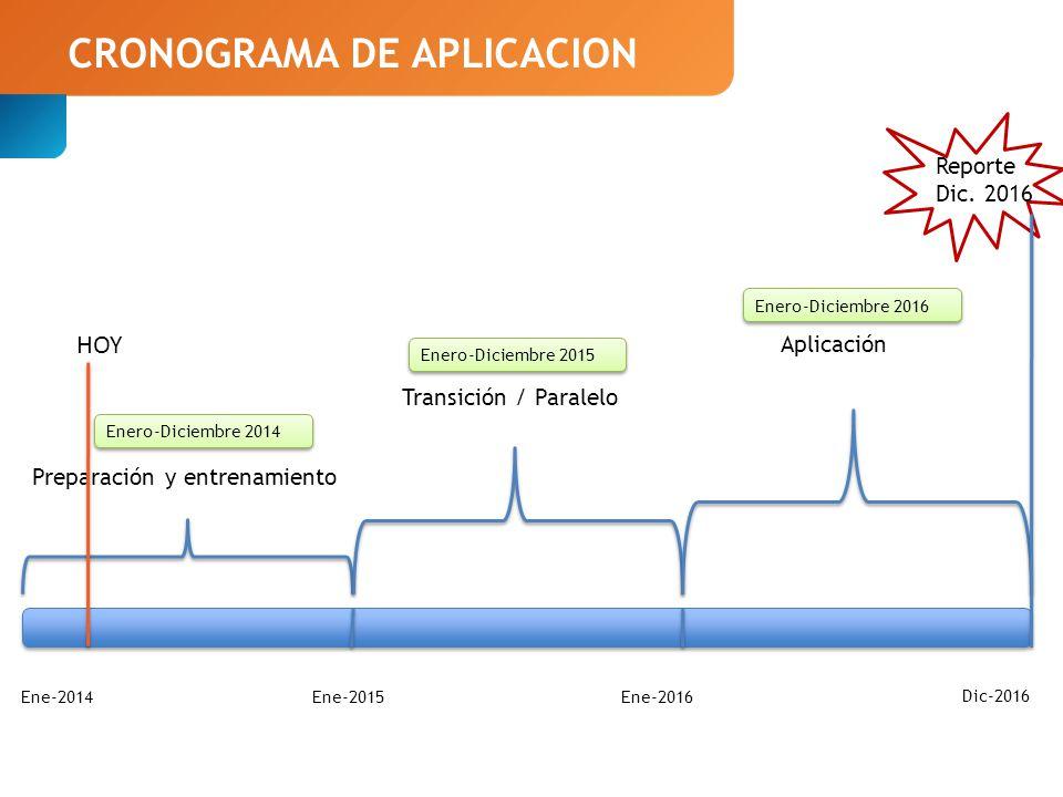 CRONOGRAMA DE APLICACION