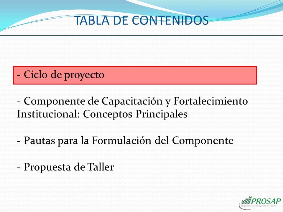 TABLA DE CONTENIDOS Ciclo de proyecto