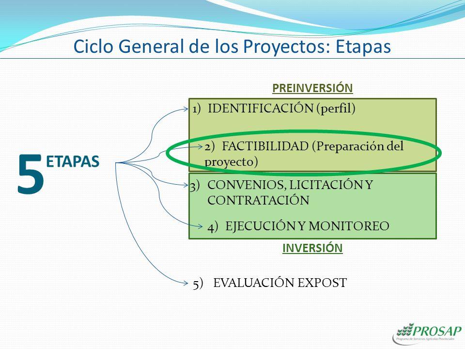 Ciclo General de los Proyectos: Etapas