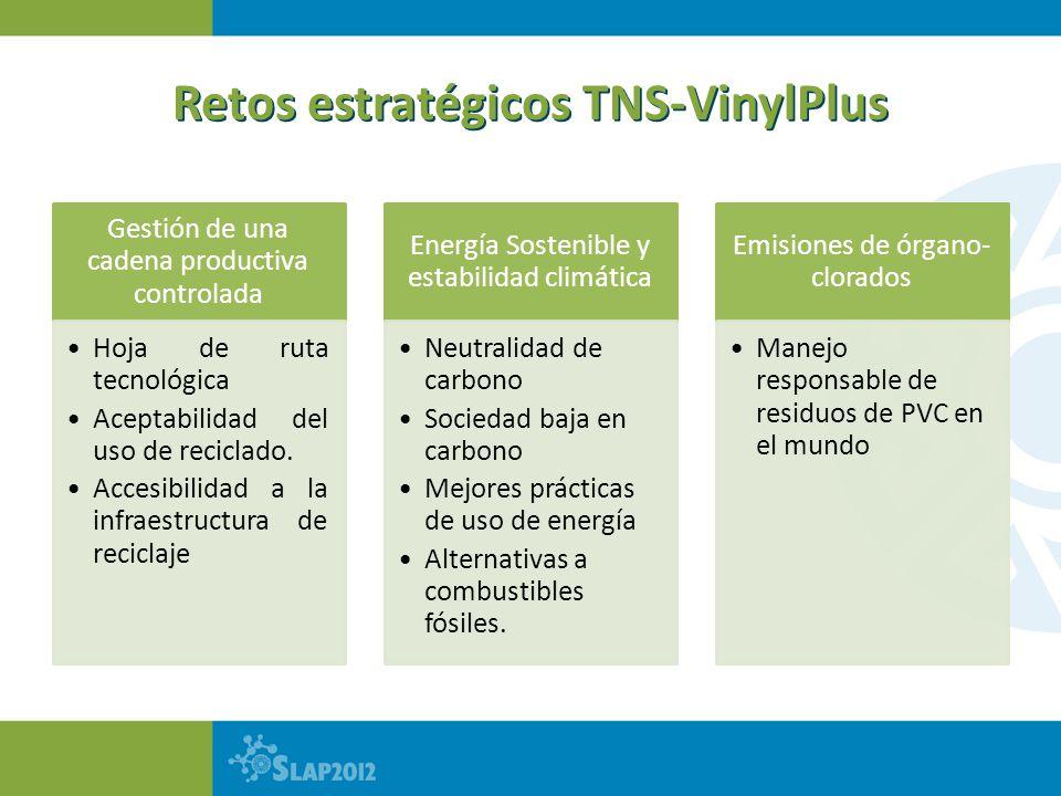 Retos estratégicos TNS-VinylPlus