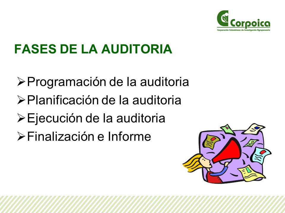 FASES DE LA AUDITORIA Programación de la auditoria. Planificación de la auditoria. Ejecución de la auditoria.