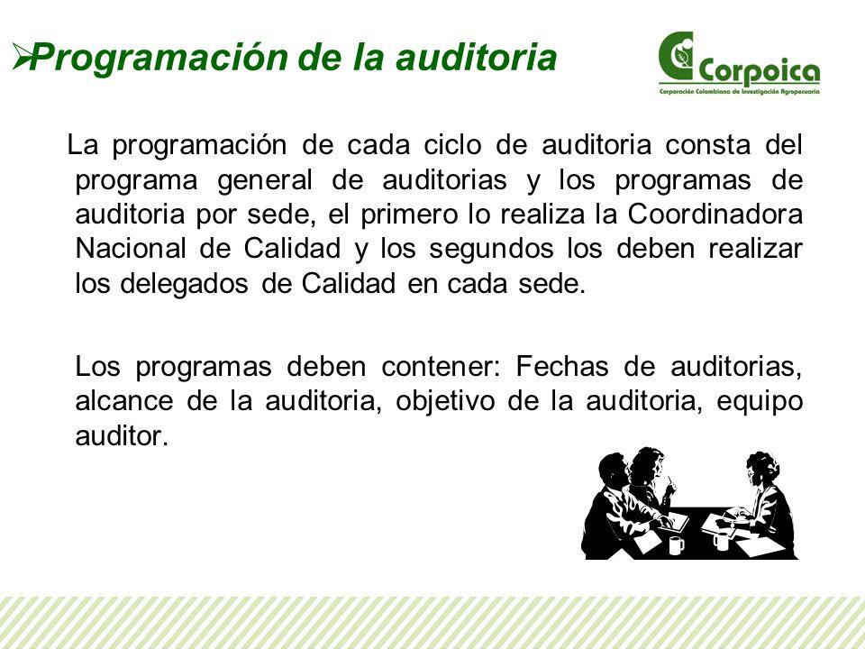 Programación de la auditoria