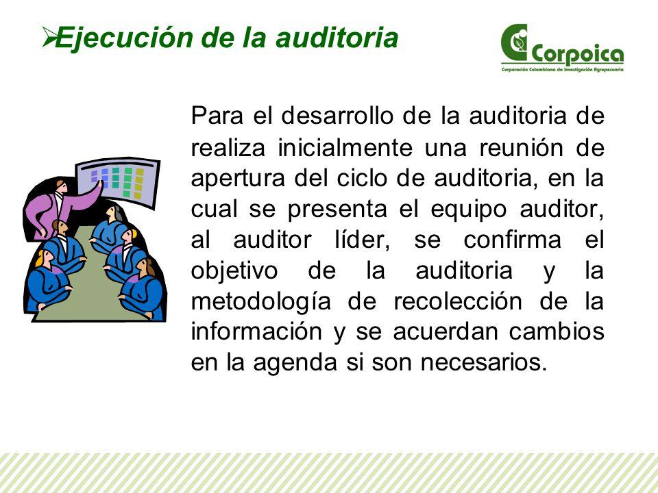 Ejecución de la auditoria