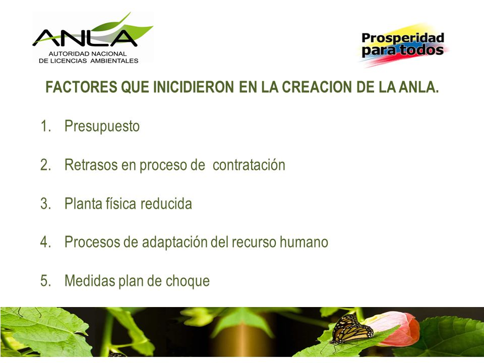 FACTORES QUE INICIDIERON EN LA CREACION DE LA ANLA.