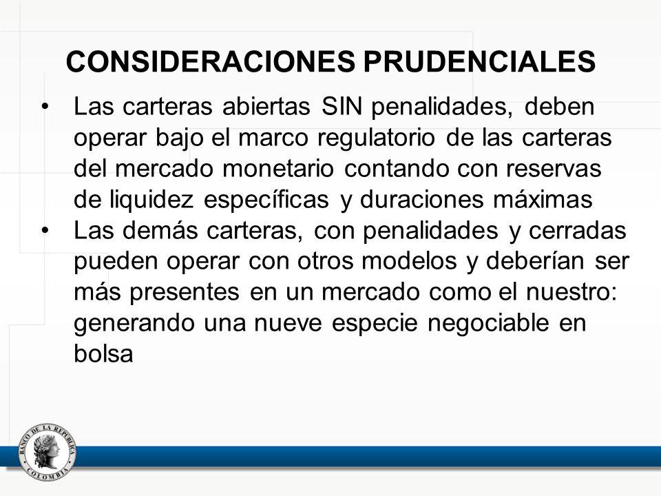 CONSIDERACIONES PRUDENCIALES
