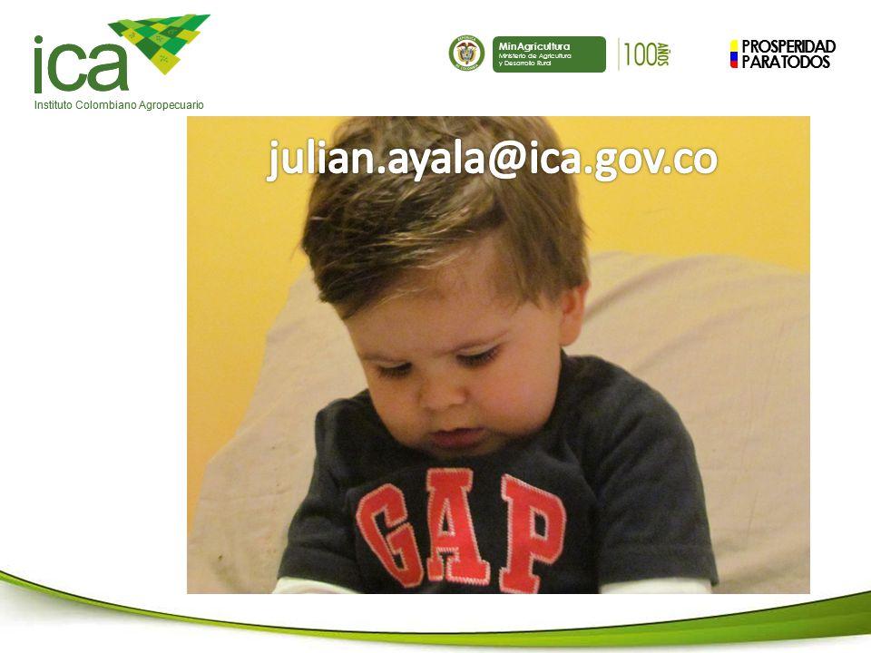 ca julian.ayala@ica.gov.co PROSPERIDAD PARA TODOS