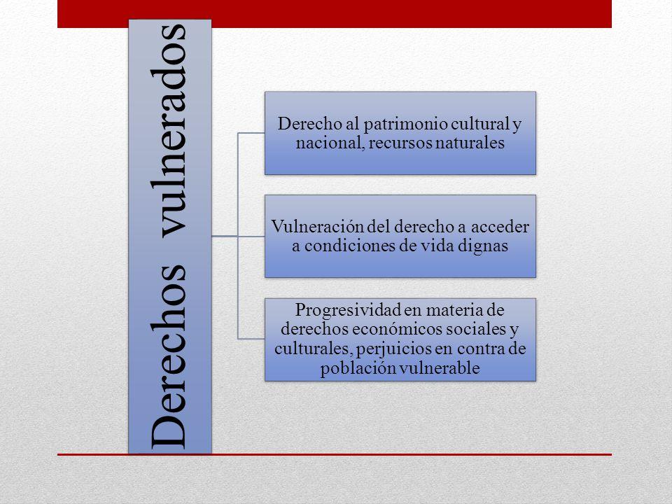 Derecho al patrimonio cultural y nacional, recursos naturales