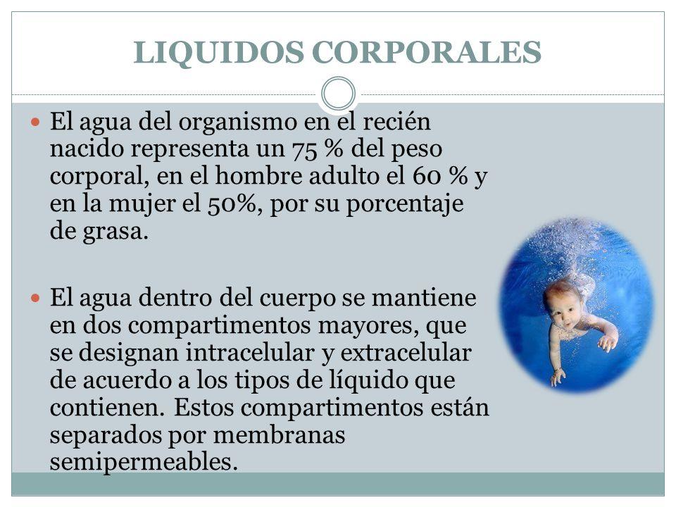 LIQUIDOS CORPORALES