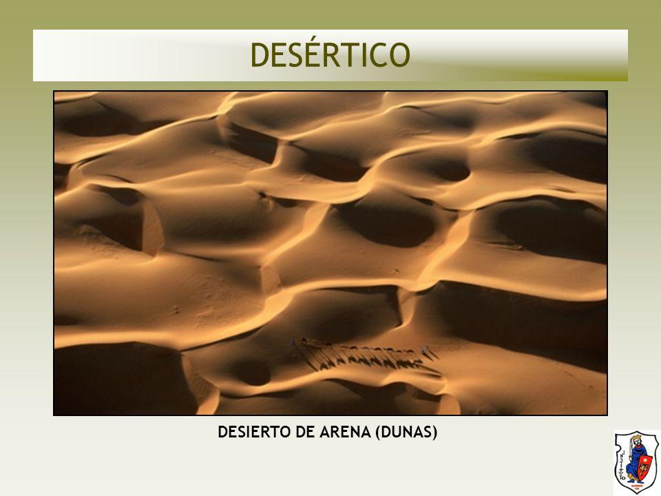 DESIERTO DE ARENA (DUNAS)