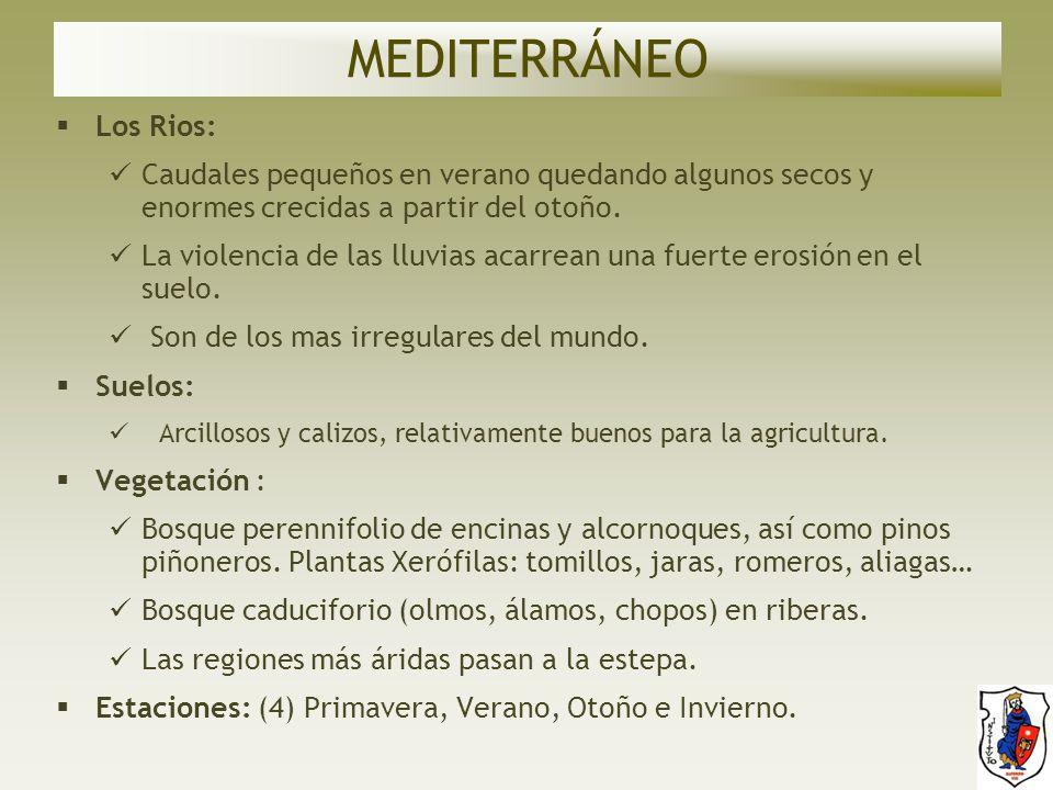 MEDITERRÁNEO Los Rios: