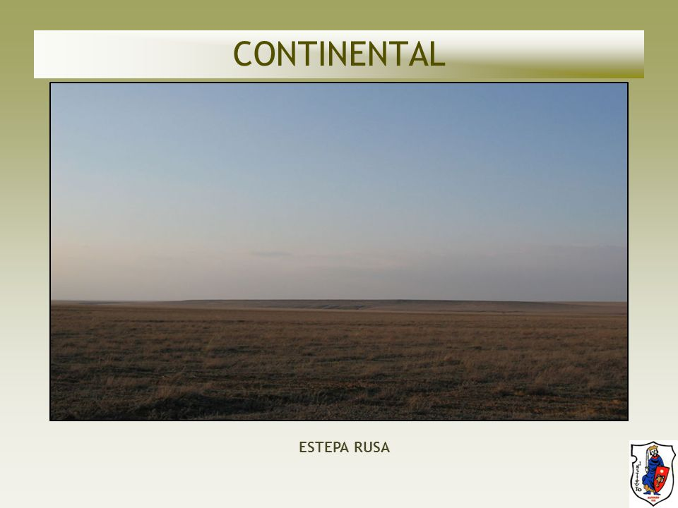 CONTINENTAL ESTEPA RUSA