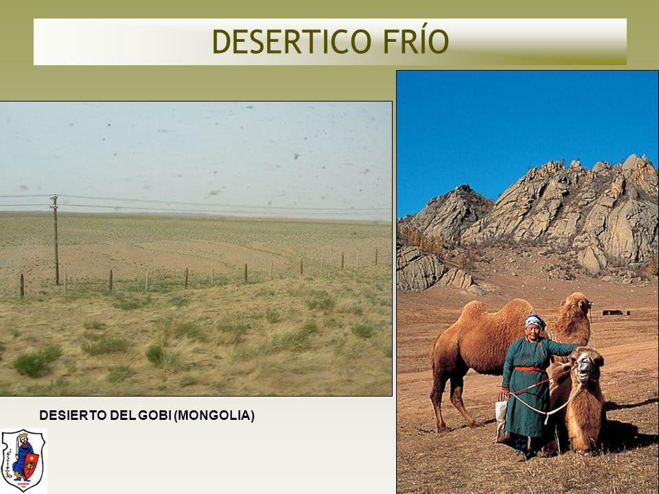 DESERTICO FRÍO DESIERTO DEL GOBI (MONGOLIA)