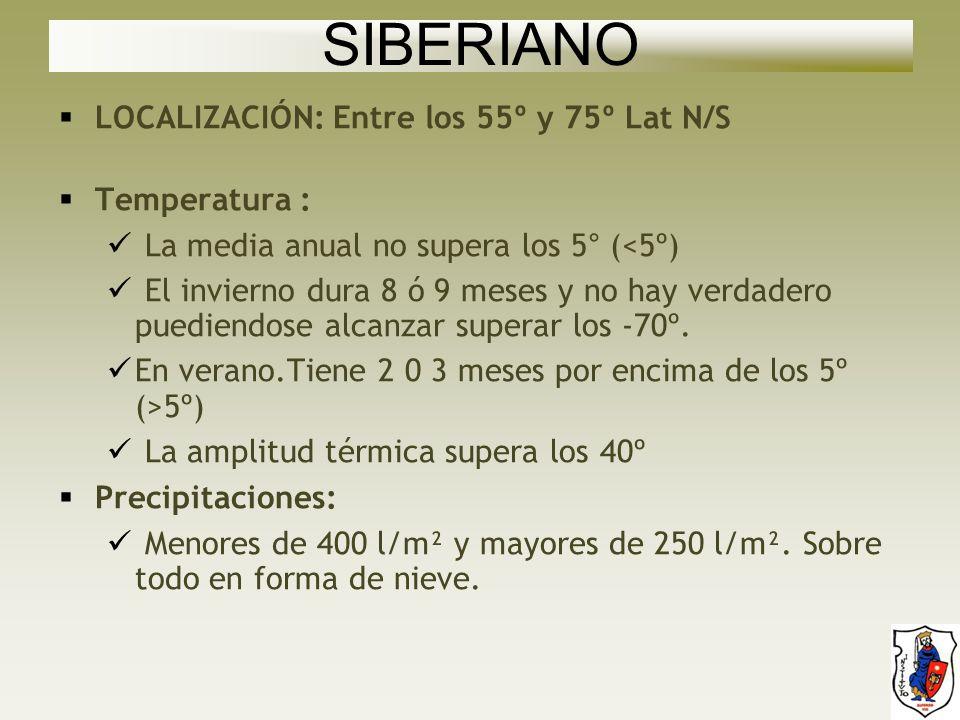 SIBERIANO LOCALIZACIÓN: Entre los 55º y 75º Lat N/S Temperatura :