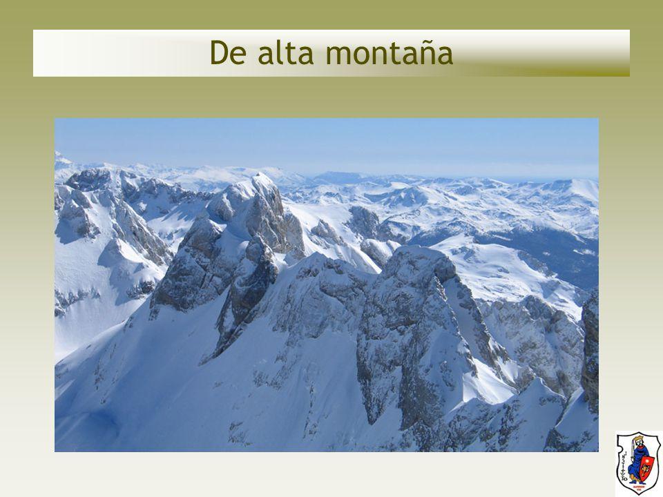 De alta montaña