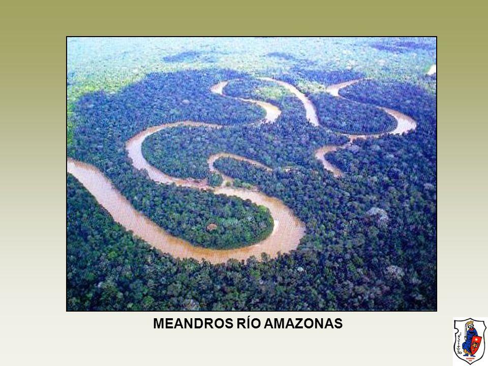 MEANDROS RÍO AMAZONAS