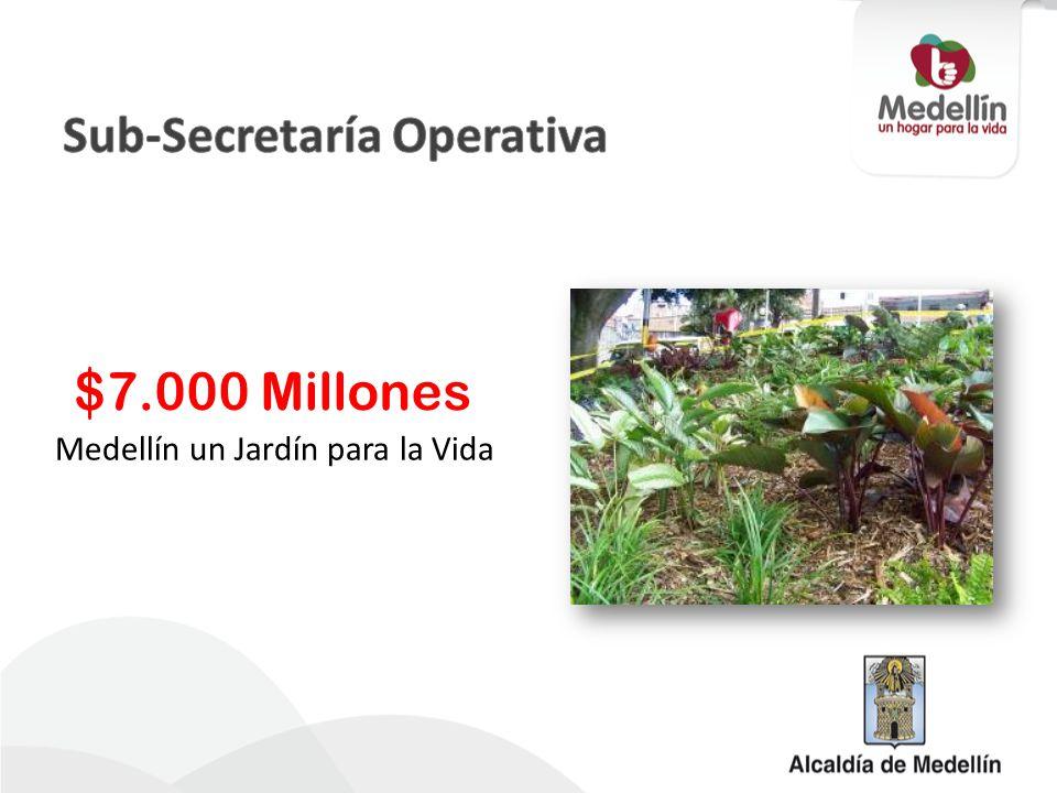 Medellín un Jardín para la Vida