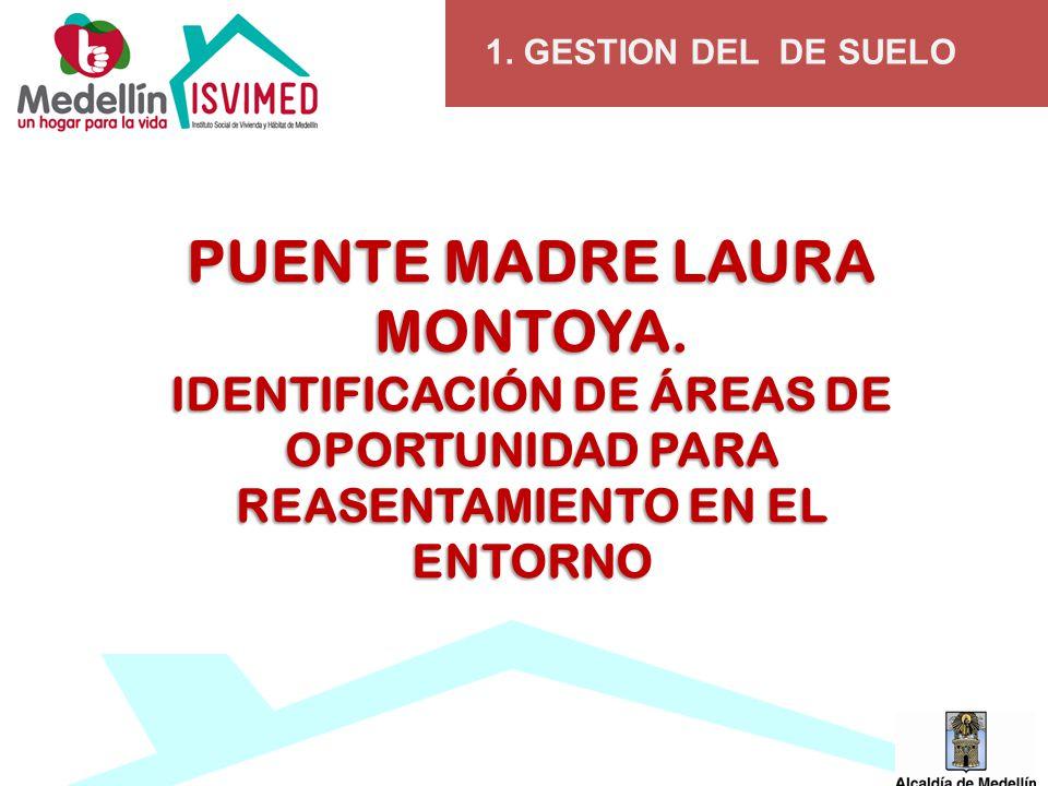 1. GESTION DEL DE SUELO PUENTE MADRE LAURA MONTOYA.