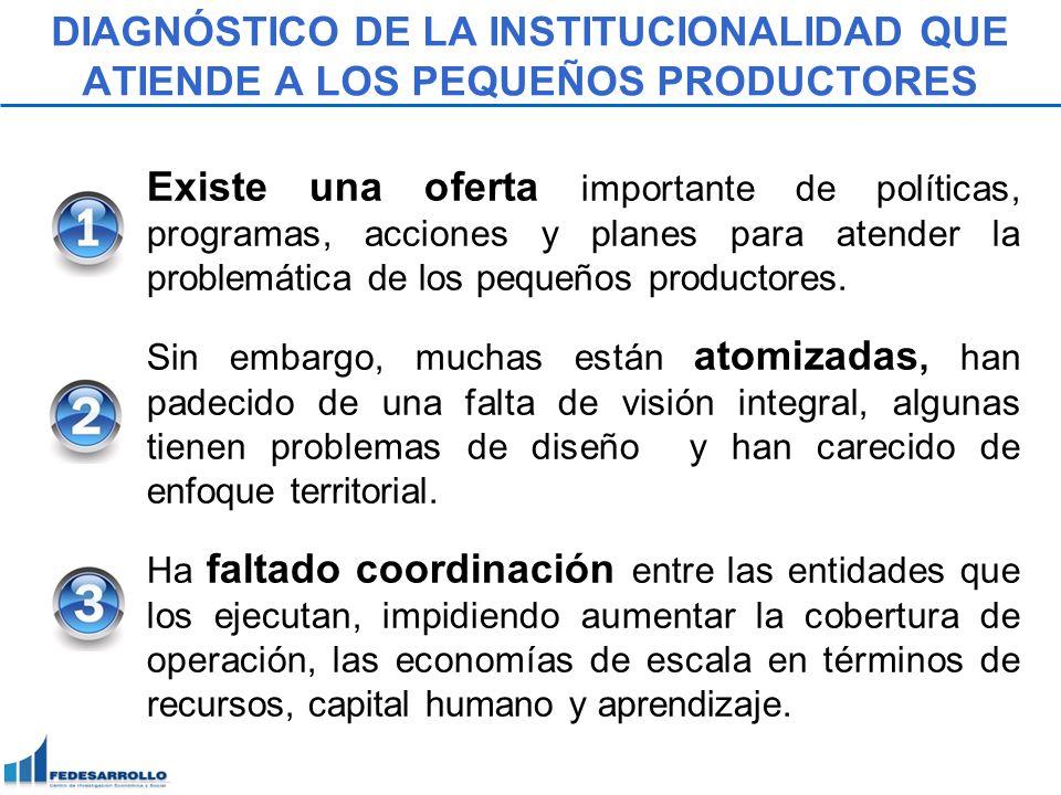 DIAGNÓSTICO DE LA INSTITUCIONALIDAD QUE ATIENDE A LOS PEQUEÑOS PRODUCTORES