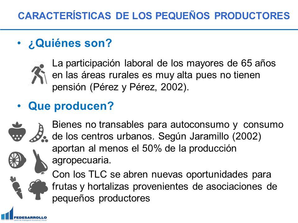 CARACTERÍSTICAS DE LOS PEQUEÑOS PRODUCTORES