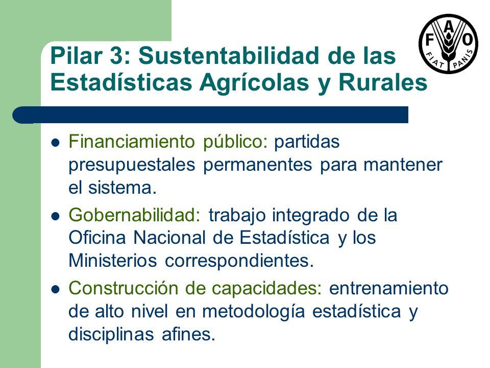 Pilar 3: Sustentabilidad de las Estadísticas Agrícolas y Rurales