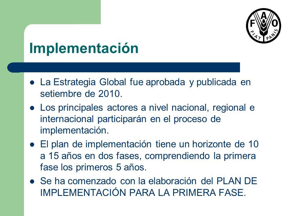 Implementación La Estrategia Global fue aprobada y publicada en setiembre de 2010.
