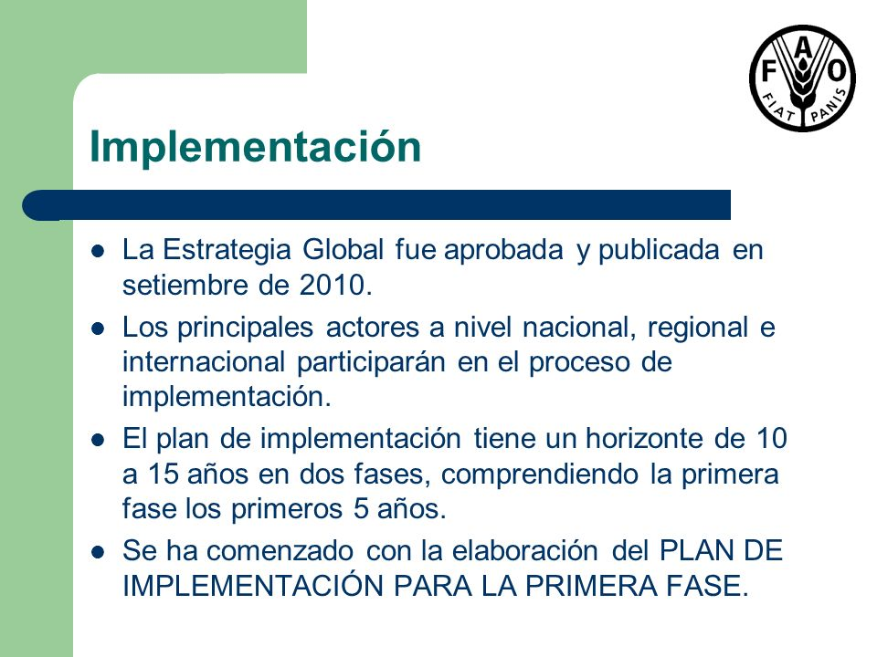 ImplementaciónLa Estrategia Global fue aprobada y publicada en setiembre de 2010.