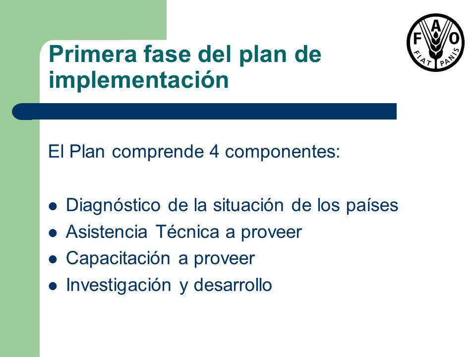Primera fase del plan de implementación