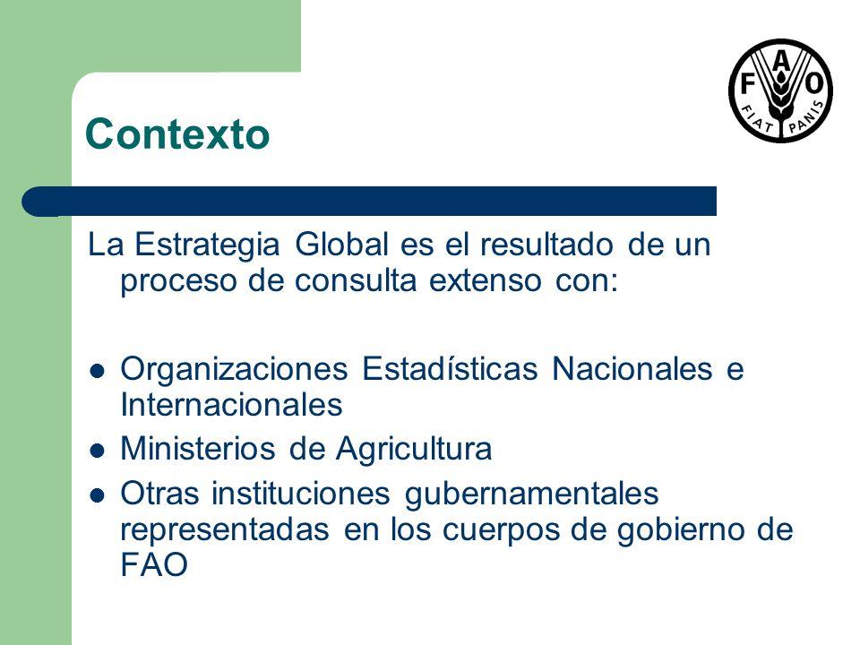 Contexto La Estrategia Global es el resultado de un proceso de consulta extenso con: Organizaciones Estadísticas Nacionales e Internacionales.