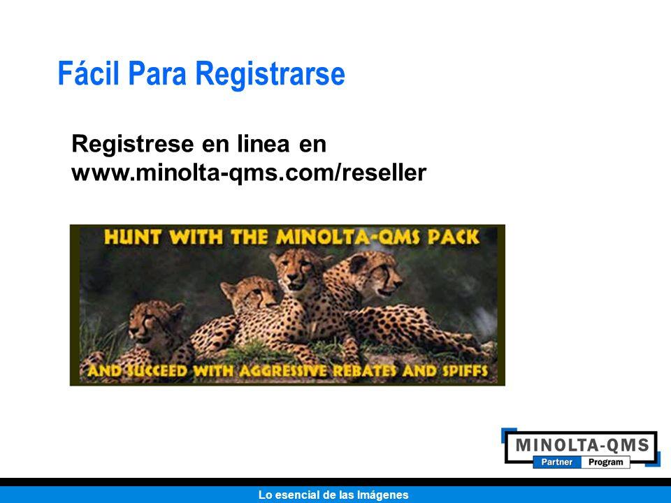 Fácil Para Registrarse