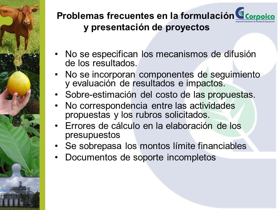 Problemas frecuentes en la formulación y presentación de proyectos