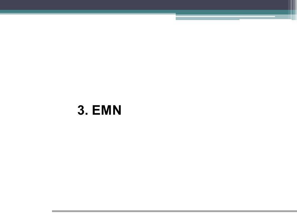3. EMN