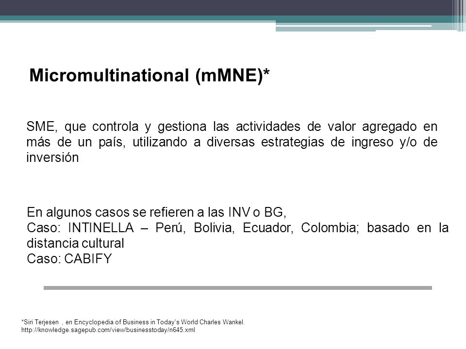 Micromultinational (mMNE)*