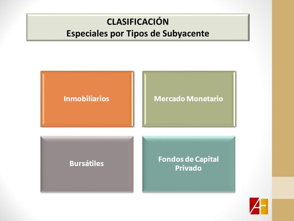 CLASIFICACIÓN Especiales por Tipos de Subyacente