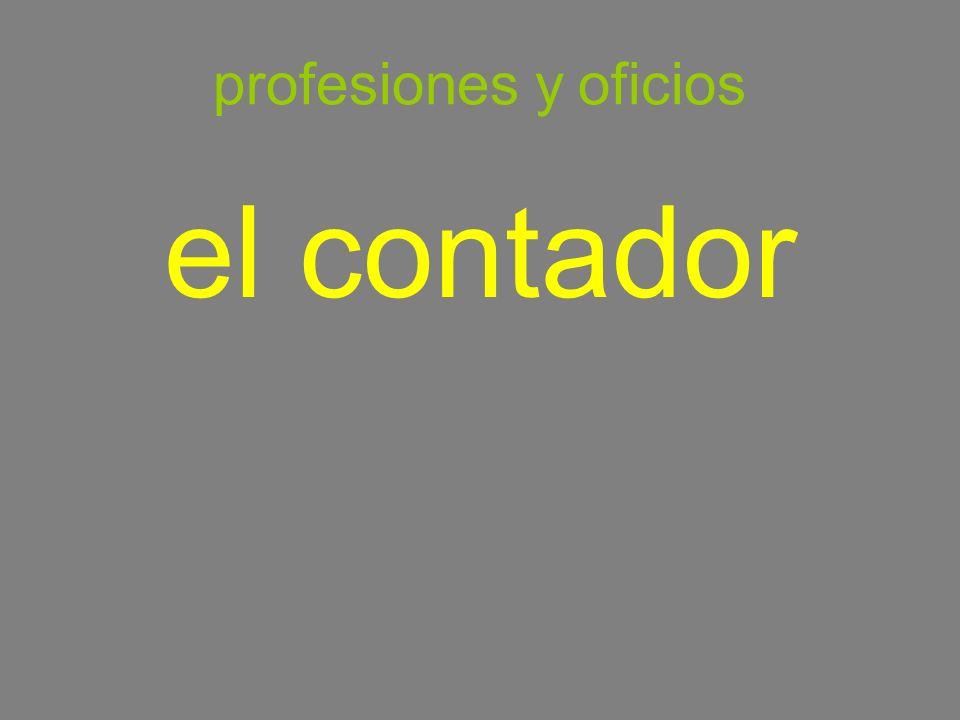 profesiones y oficios el contador