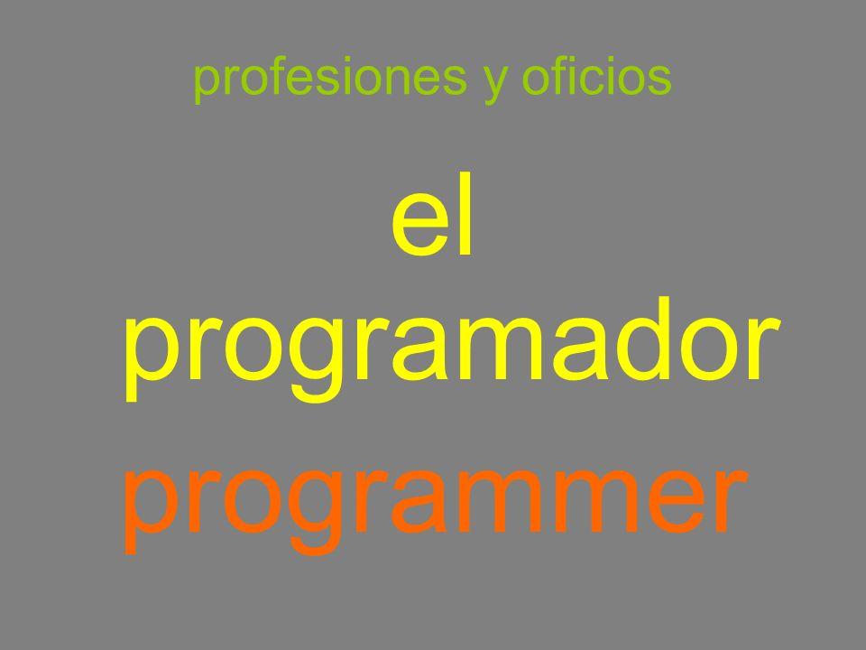 profesiones y oficios el programador programmer