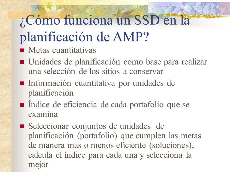¿Cómo funciona un SSD en la planificación de AMP