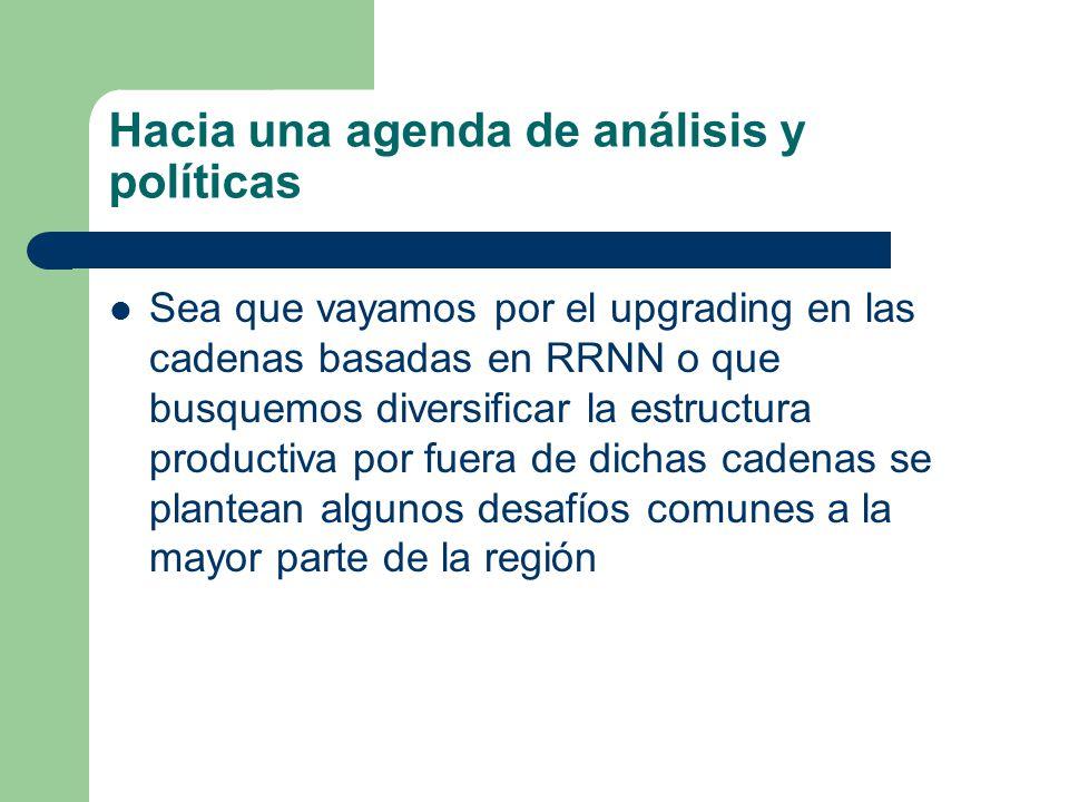 Hacia una agenda de análisis y políticas
