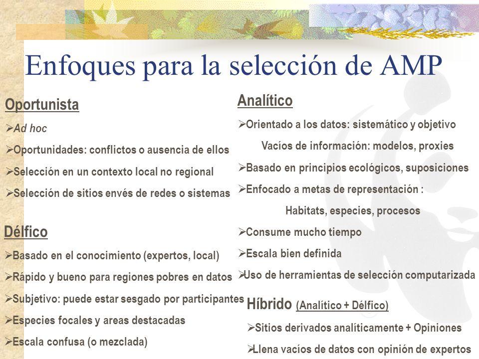 Enfoques para la selección de AMP