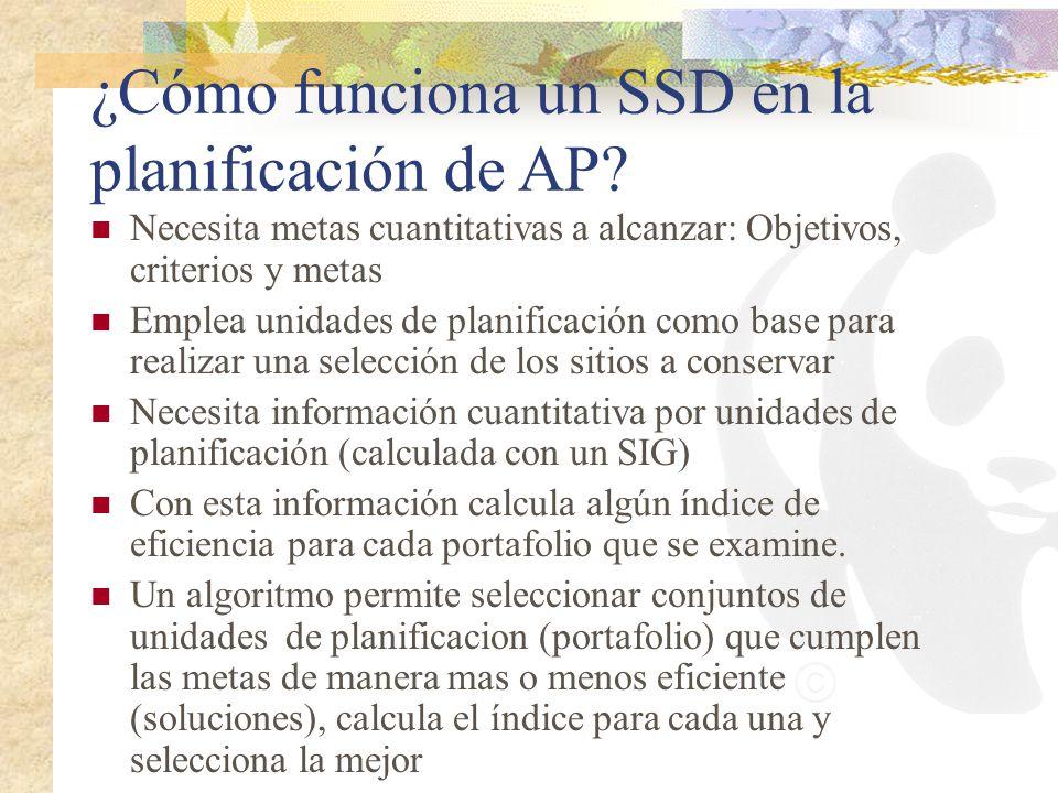 ¿Cómo funciona un SSD en la planificación de AP