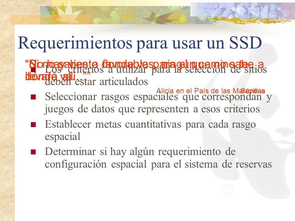 Requerimientos para usar un SSD