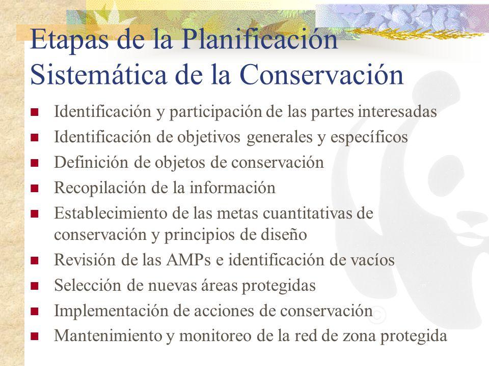 Etapas de la Planificación Sistemática de la Conservación