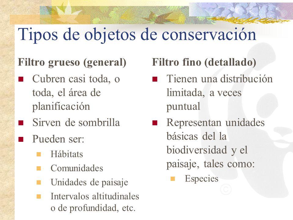 Tipos de objetos de conservación