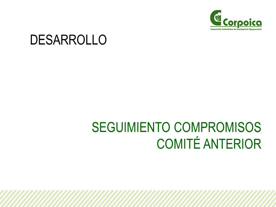 DESARROLLO SEGUIMIENTO COMPROMISOS COMITÉ ANTERIOR