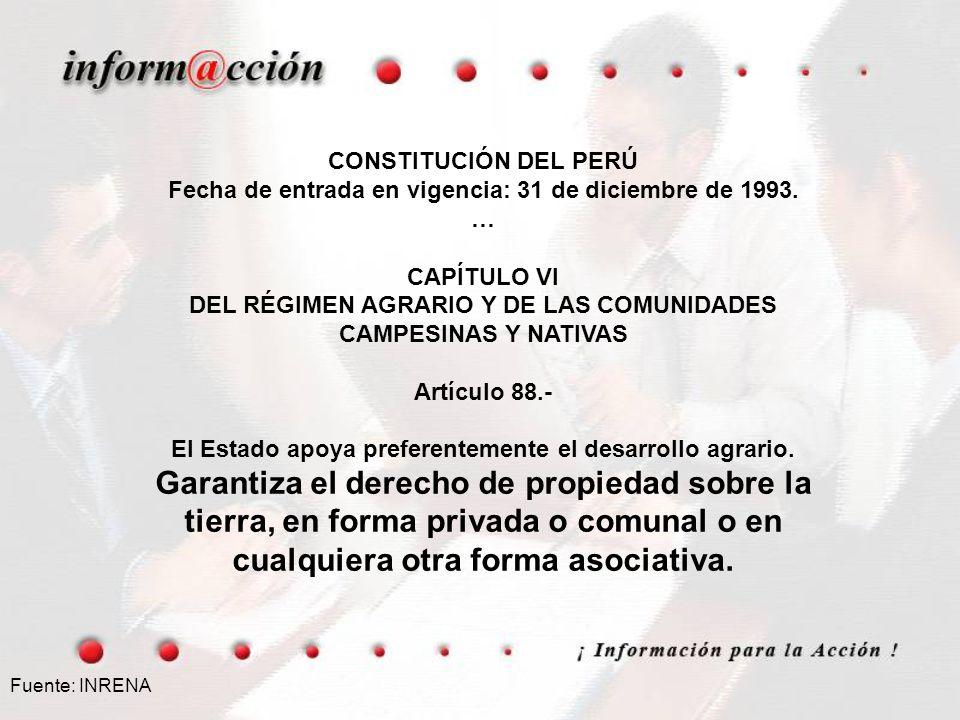 Fecha de entrada en vigencia: 31 de diciembre de 1993. … CAPÍTULO VI