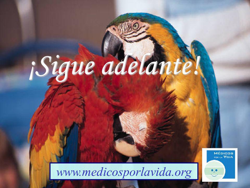 ¡Sigue adelante! www.medicosporlavida.org Gianell's Creations